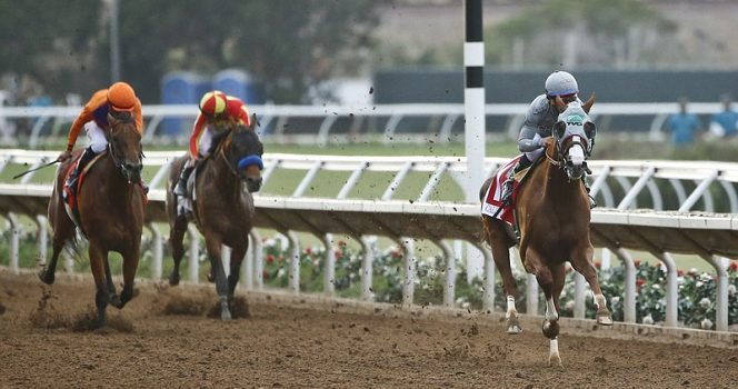 Shots Fired During Horse Racing Event In California Injures 2 People